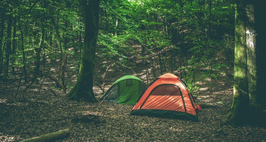 מחנות קיץ בארצות הברית